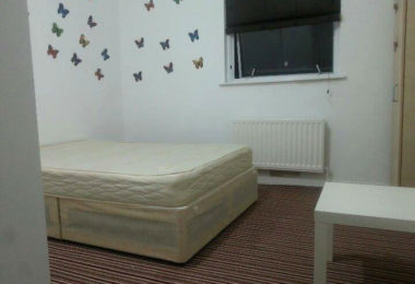 2 camere in Forest Gate E7