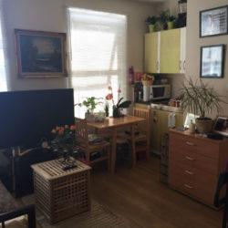 YCP Studio Apartament - Leyton E10