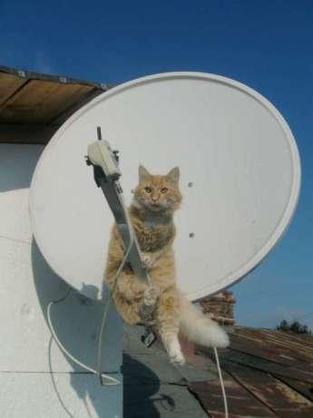 Instalari, Vanzari, Receptoare Antene Satelit in Londra si imprejurimi