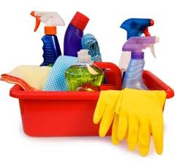 Dustbusters Cleaners required - Clean and iron in Private Houses